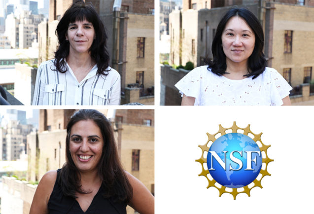 School of Education Faculty Receive National Science Foundation Research Awards