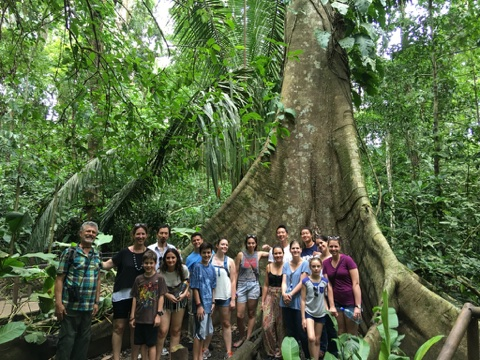 Image: Students and teachers standing in a rainforest in Costa Rica